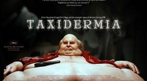 taxidermia-300x165.jpg