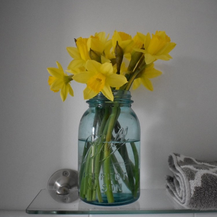 Daffodils in my bathroom