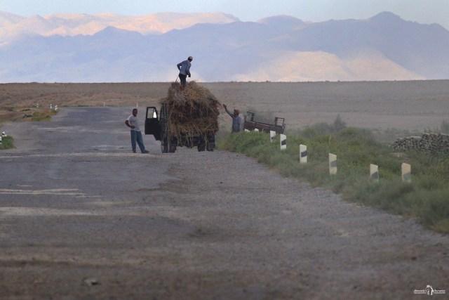 Узбекистан. Дорога.