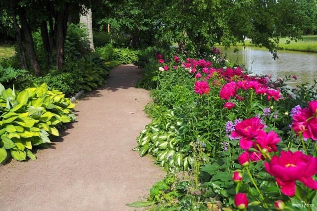Цветы вдоль дорожек английского парка