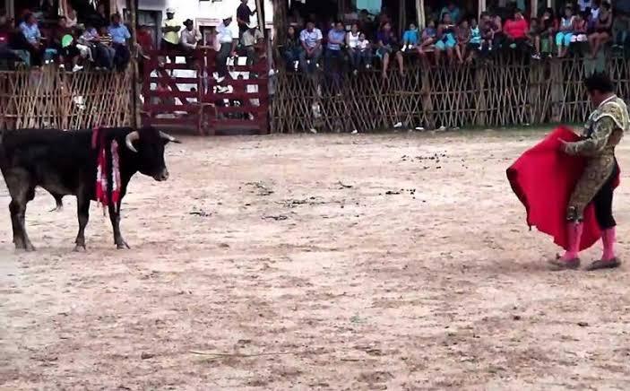 Lázaro Cárdenas permite corridas de toros y peleas de gallos