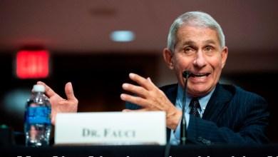 Photo of Estados Unidos puede pasar de 40 mil a 100 mil casos al día de COVID-19, advierte Fauci