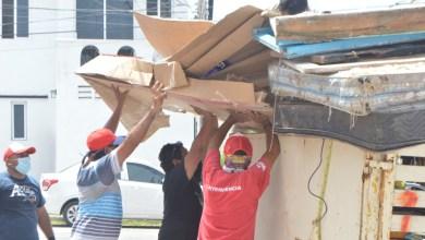Photo of Refuerzan trabajos del programa «Isla Mujeres Verde y Saludable»