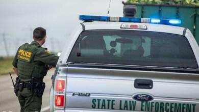 Photo of Aumentan 40 por ciento detenciones de migrantes en junio, revela CBP