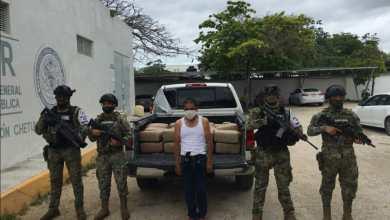 Photo of Incauta Marina 160 kilos de marihuana en el sur de Quintana Roo
