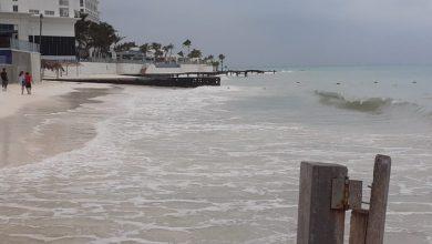 Photo of Náuticos de Cancún mantendrán resguardadas sus embarcaciones