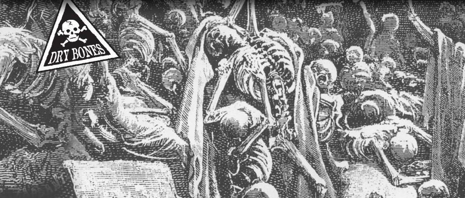 14 Dry Ezekiel 37 Bones