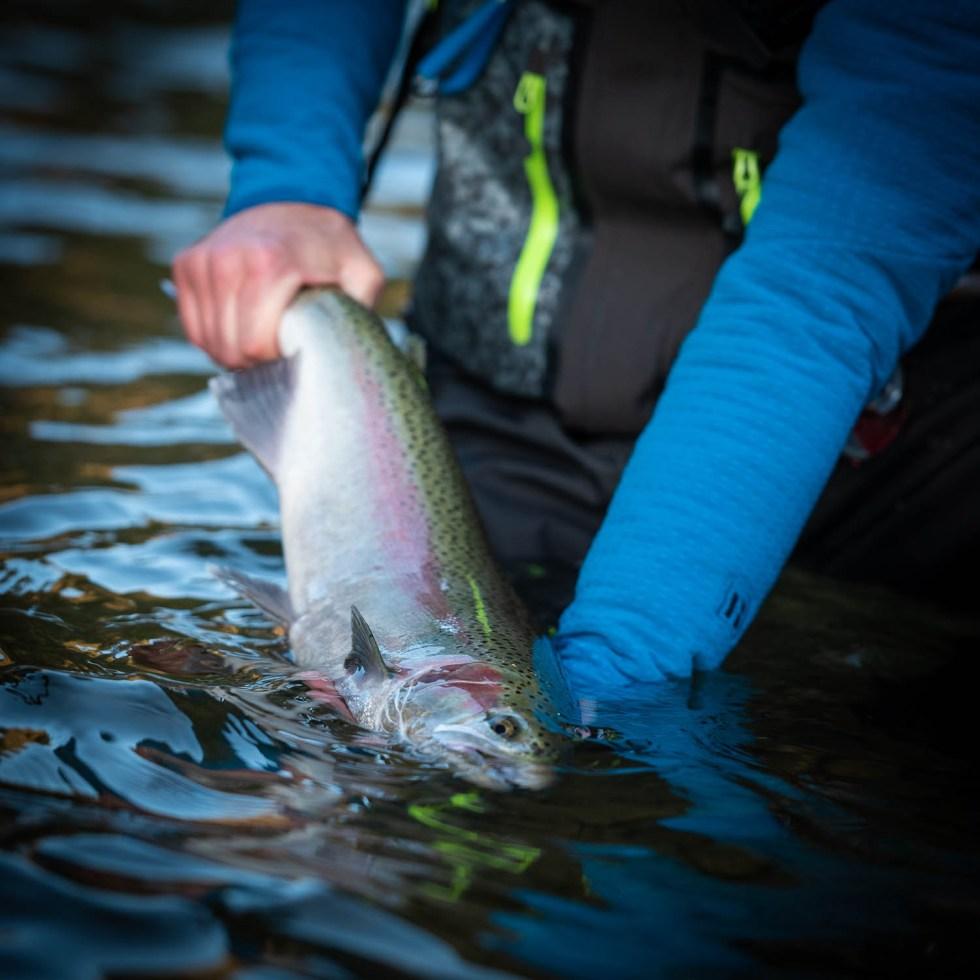 DRYFTculture fly fishing steelhead