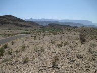"""not the plant density...12"""" of annual rainfall is """"wetter"""" than El Paso's 8"""", but nearing 2000', it's also 10F warmer over the year"""