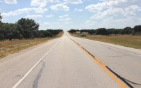 """E of Junction TX - 25"""", live oak savannah, mixed grass prairie"""