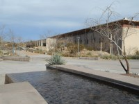 had to take my coworker by Ten Eyck's oasis amidst UTEP and an emerging sun (finally!)