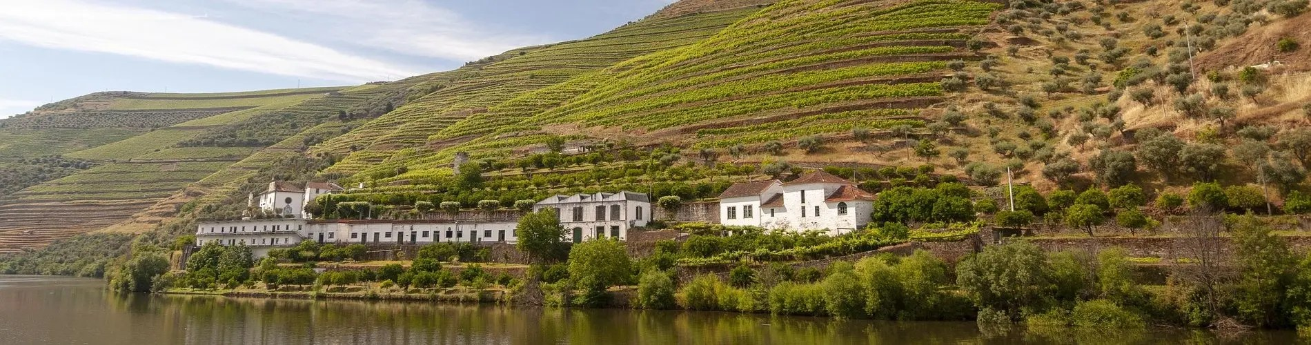 Winemaking in Portugal