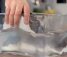 desalt salt fish