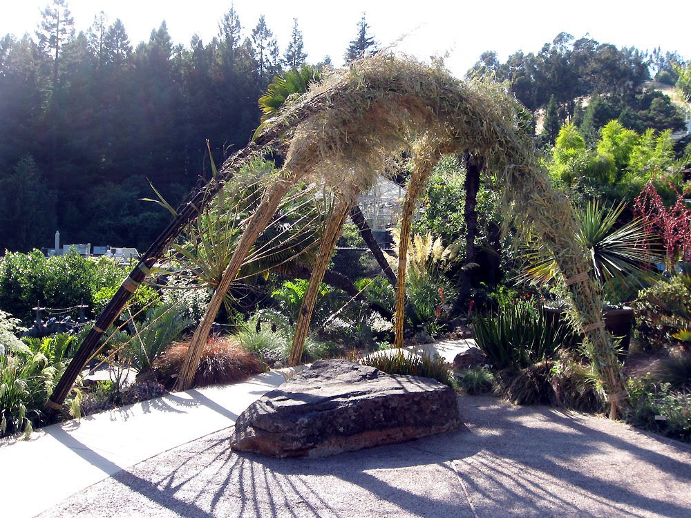 Drystonegarden 187 Blog Archive 187 Uc Botanical Garden