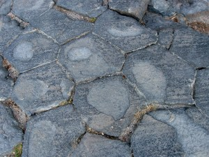 The Devils paver pattern