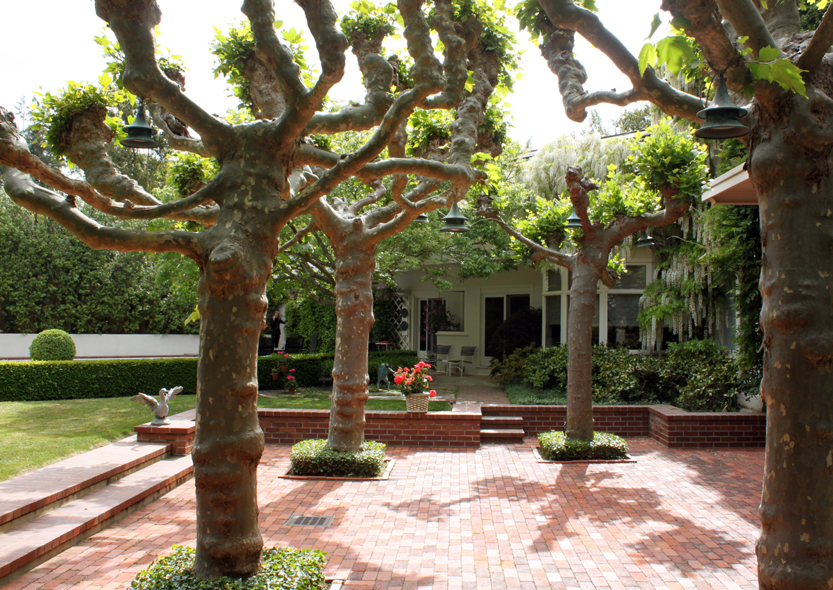 DryStoneGarden » Blog Archive » A Tommy Church Garden