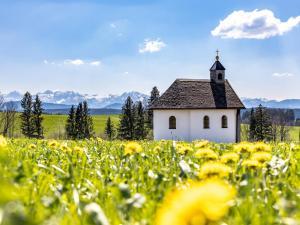 Allgäu-Wandbilder Frühling