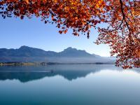 Wandbilder Herbst