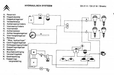 schema DS