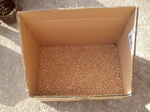 Les granulés de liège tapissent le fond de la grande boîte