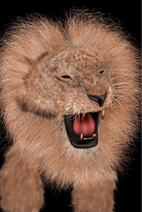 lion-v10-5-01