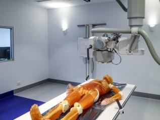 X-Ray REACH Facility