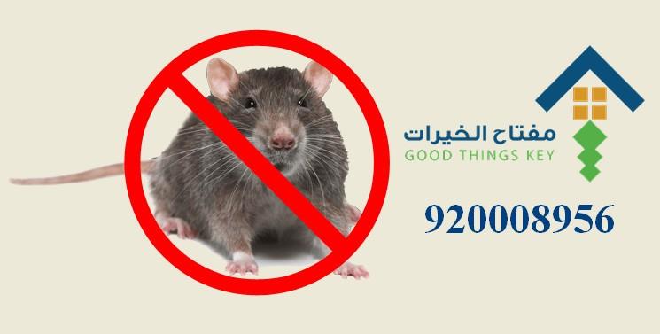 افضل شركة مكافحة الجرذان شرق الرياض 920008956