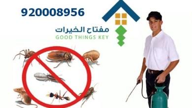 افضل شركة مكافحة الحشرات بالرياض 920008956