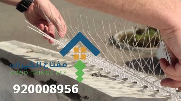 شركة طارد الحمام جنوب الرياض 920008956