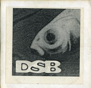 DSB 95 demo front