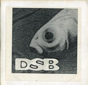 DSB 95 demo front