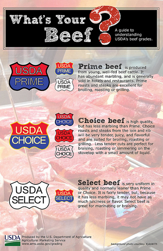 prime choice and select beef