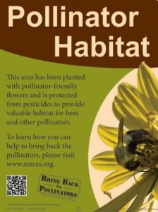 Take The Pledge and Bring Back The Pollinators.