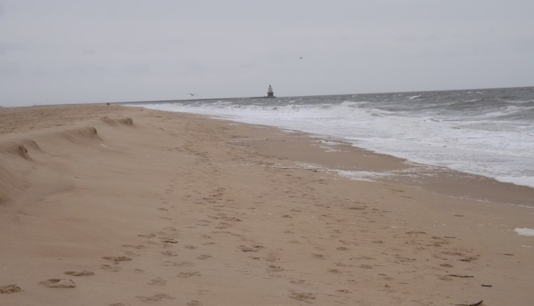 The Point today at Cape Henlopen
