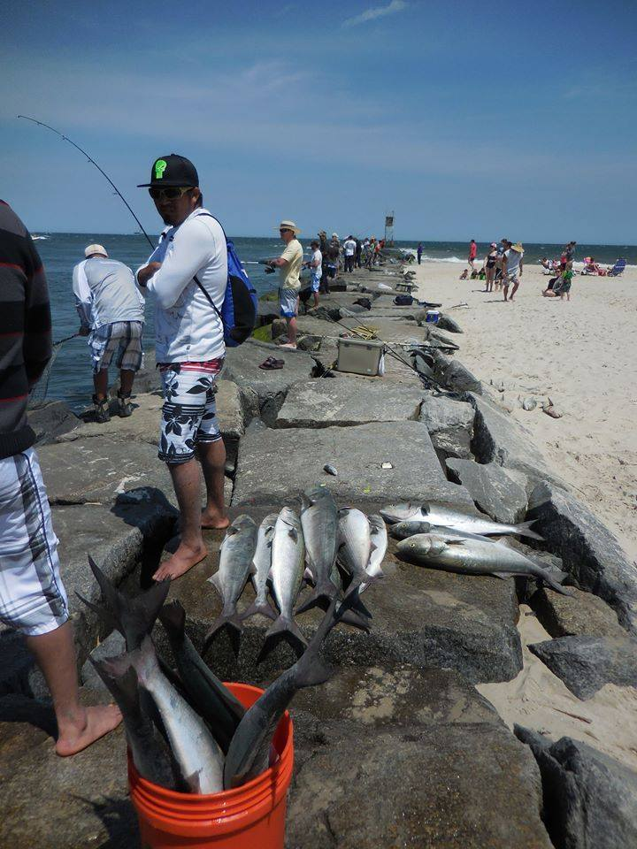 indian river inlet, IRI, delaware seashore state park, bluefish, jetty jockeys, rockpile,