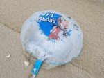 mylarballoons need to be banned, delaware, sussex county, beach clean up