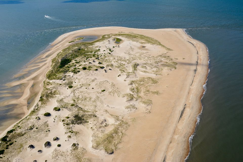 cape henlopen state park, the point, delaware, sussex county, surf fishing,