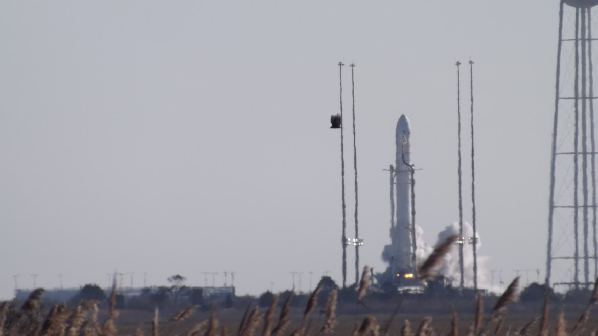 antares, wallops island, nasa, international space station, rocket launch, resupply mission