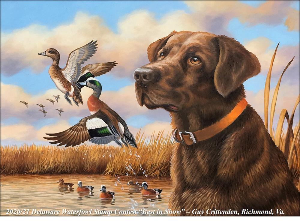 Delaware Waterfowl Stamp