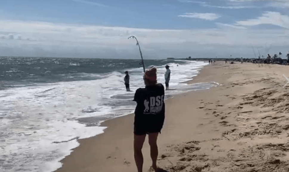 DS Custom Tackle, delaware, sussex county, dsf summer surf fishing slam series, dsf sweatshirt, fishing tournamewent, ray, summer ray, cownose ray, eagle ray, bullnose ray, cape henlopen state park, herring point beach