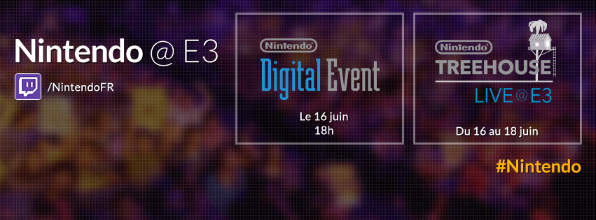 Un Franc Succs Pour Le Tournoi Super Smash Bros DS In