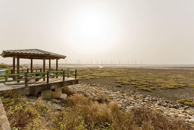Gaomei Wetland (2)