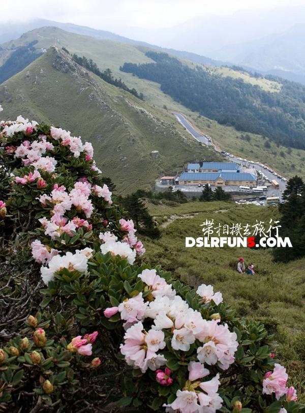 hehuan-du-juan (9)