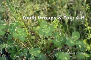Youth Groups & You: 4-H - dsm4kids.com