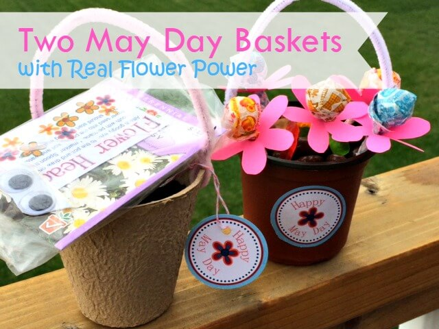 Two May Day Baskets with Real Flower Power