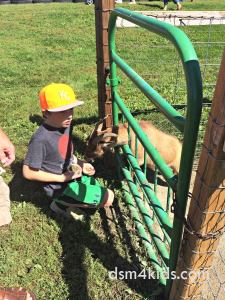 Tips 4 a Family Fun Day at Center Grove Orchard– dsm4kids.com