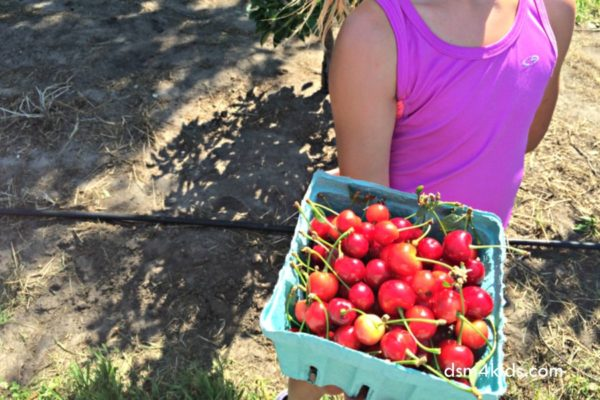 2017 Guide to U-Pick Berry Farms in Central Iowa – dsm4kids.com