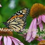 2017 Monarch Tagging Events in Des Moines - dsm4kids.com