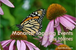 2017 Monarch Tagging Events in Des Moines - dsm4kids.com