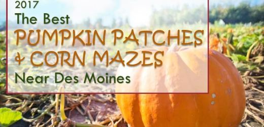 2017 The Best Pumpkin Patches & Corn Mazes Near Des Moines